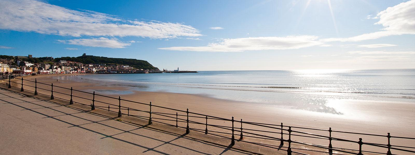 Great Location in Scarborough